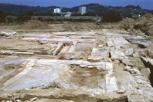 Maison aux Cinq Mosaiques -Site archéologique de Saint-Romain-en-Gal